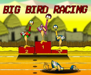 Big Bird Racing ゲーム